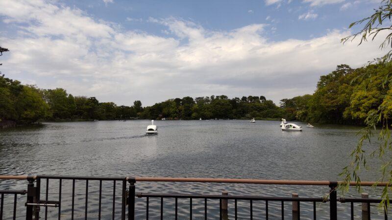 洗足池公園とボート