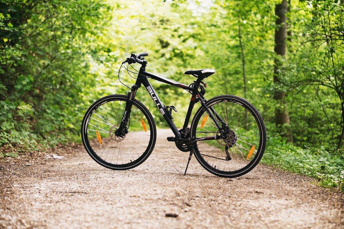 自然の中の自転車
